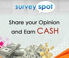 survey spot review